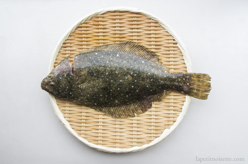 How To Prepare Olive Flounder Hirame Ź³ç›® Òラメ For Nigiri Sushi La Petit Noisette It is very similar in appearance to the dab, another saltwater fish, and is even confused with it by the player in the its catch quotes in wild world and new leaf. how to prepare olive flounder hirame